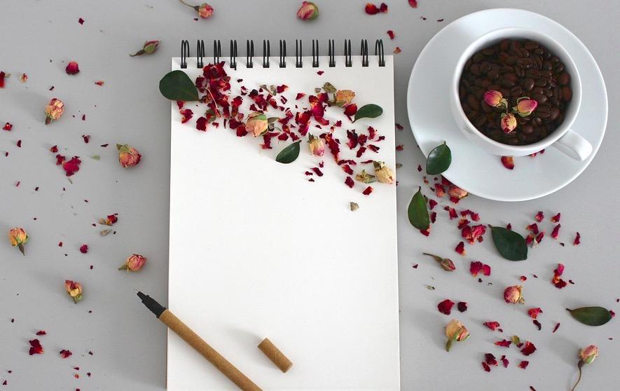 Qué necesito para empezar a escribir artículos